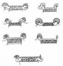 Diseños comunes en los cuerpos de las aves